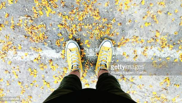 low section of man standing amidst yellow flower - yellow shoe stock pictures, royalty-free photos & images
