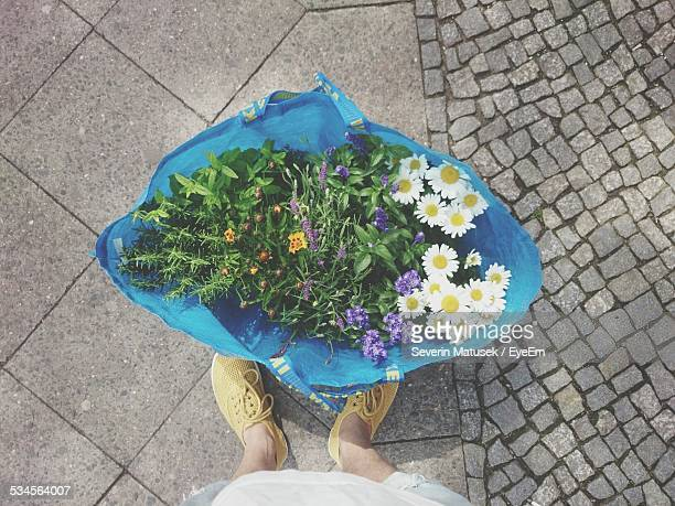 Low Section Of Man Standing By Flower Bag On Street