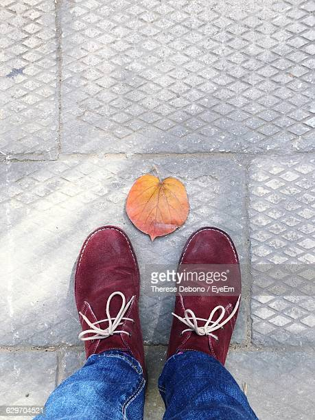 Low Section Of Man Standing By Leaf On Footpath