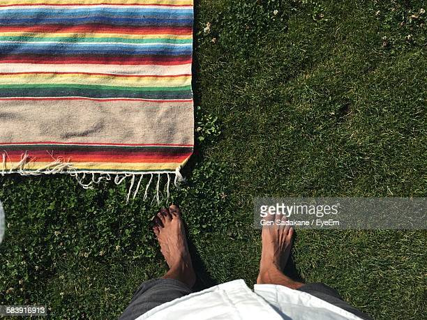 low section of man standing by picnic blanket on grassy field - scalzo foto e immagini stock