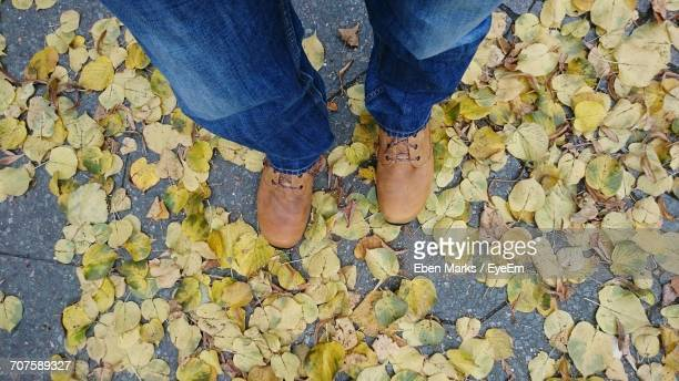 Low Section Of Man Standing On Autumn Leaves