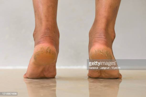 low section of man standing on floor - human foot stock pictures, royalty-free photos & images