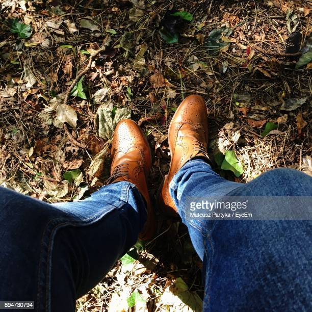 low section of man standing on grassy field - oxford shoe stock-fotos und bilder