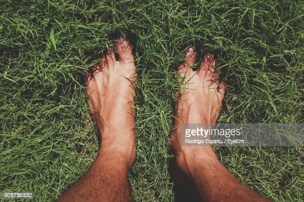 low section of man standing on grassy field - barefoot stock pictures, royalty-free photos & images