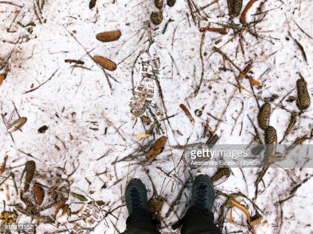 Low Section Of Man Standing On Messy Snow Covered Field During Winter