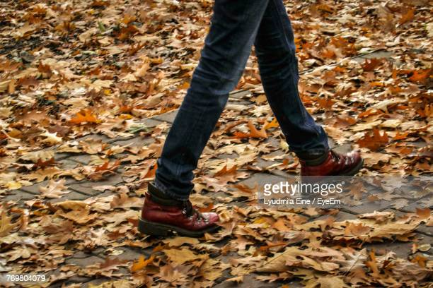 Low Section Of Man Walking On Autumn Leaves