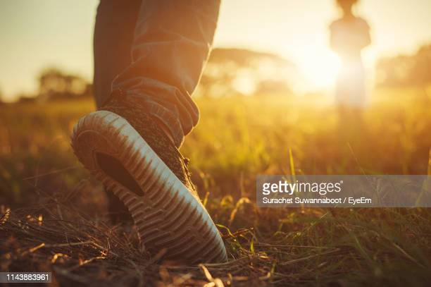 low section of man walking on grassy field during sunset - grass area stock pictures, royalty-free photos & images