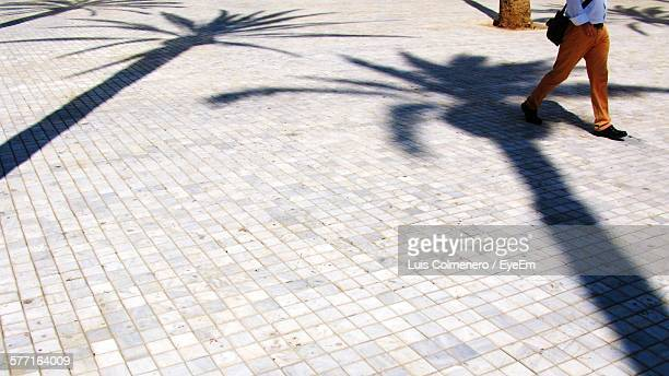 Low Section Of Man Walking On Tiled Floor With Shadow Of Palm Trees