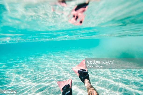 Low section of man wearing fins while swimming undersea