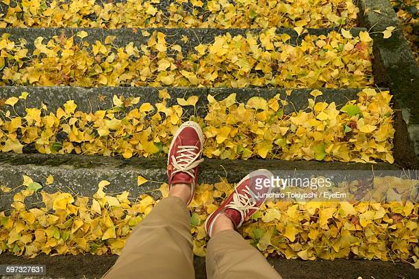 Low Section Of Man Wearing Red Shoes Walking On Leaves Covered Steps