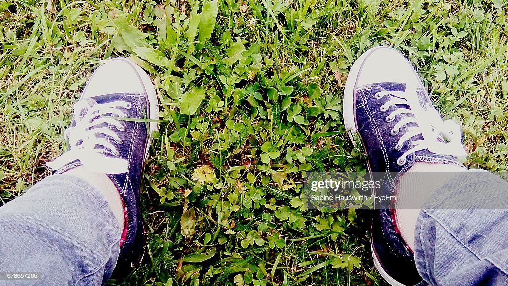 Low Section Of Man Wearing Shoes On Field : Stock-Foto