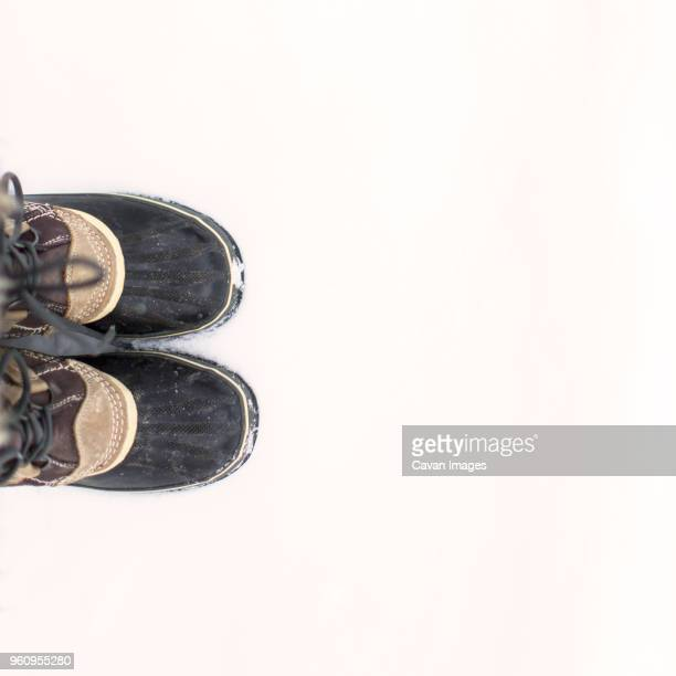 Low section of man wearing shoes on snowy field