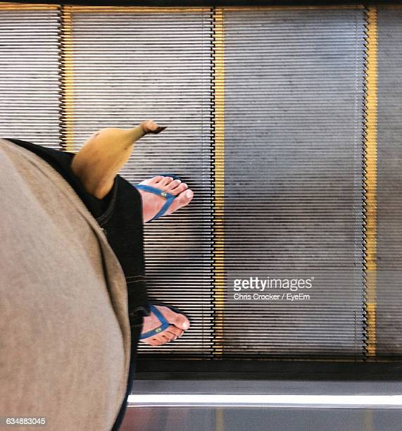 Low Section Of Man With Banana In Pocket On Escalator