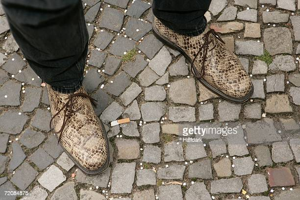 Low section of man?s snake skin shoes