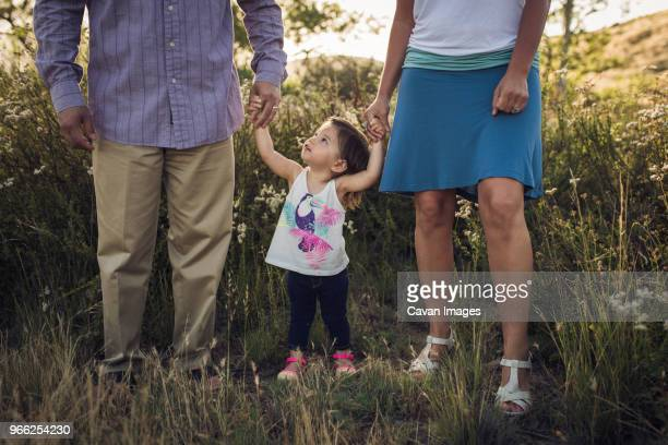 low section of parents holding hands of daughter while standing on grassy field - femme entre deux hommes photos et images de collection