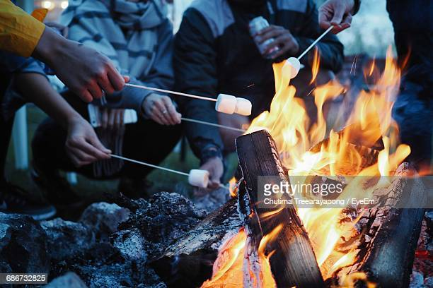 low section of people having marshmallows on barbecue - camp fire stock photos and pictures