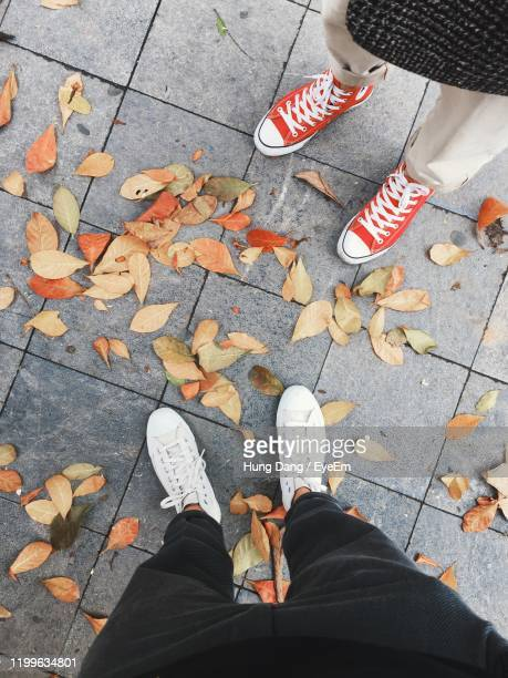 low section of people standing on footpath during autumn - low section stock pictures, royalty-free photos & images