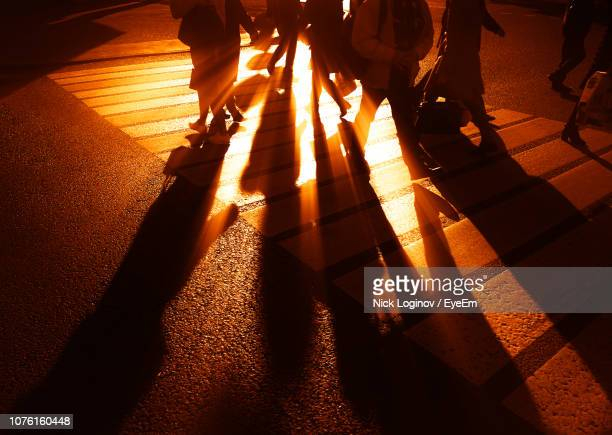 low section of people walking on road during sunset - zebra crossing stock pictures, royalty-free photos & images