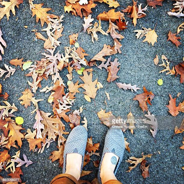 Low Section Of Person By Fallen Autumn Leaves On Footpath