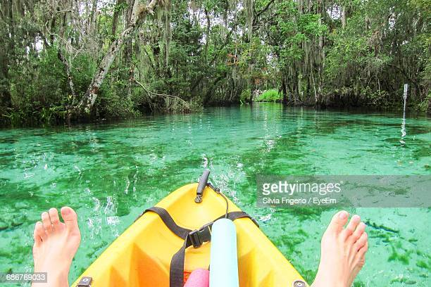 Low Section Of Person Kayaking In Sea Against Trees