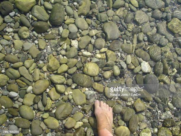 Low Section Of Person Legs On Pebbles