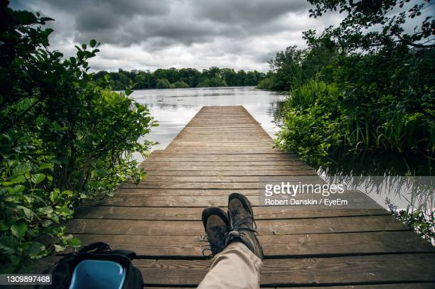 low section of person on boardwalk by plants against sky - モーペス ストックフォトと画像