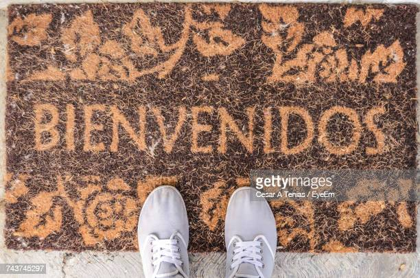 low section of person standing on doormat - human doormat foto e immagini stock