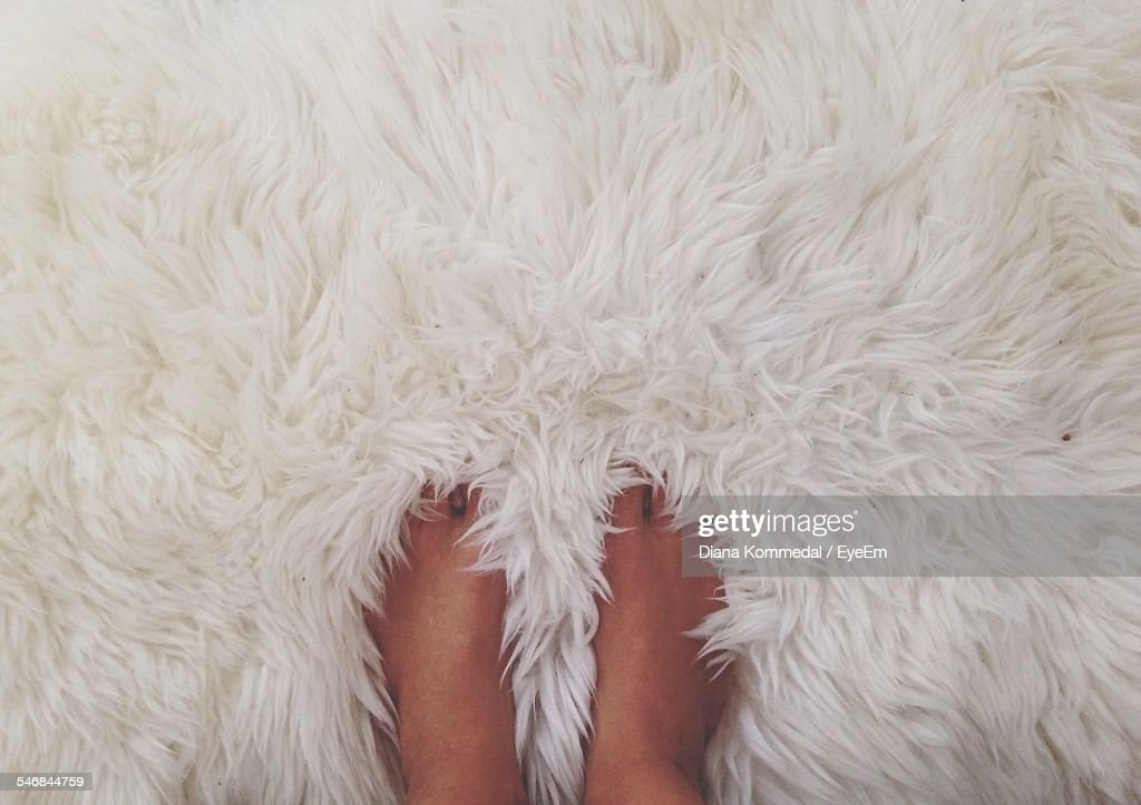 Low Section Of Person Standing On Fur Surface : Stock Photo
