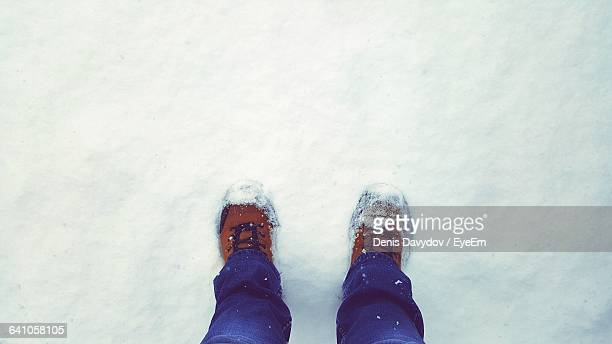 Low Section Of Person Standing On Snowcapped Field