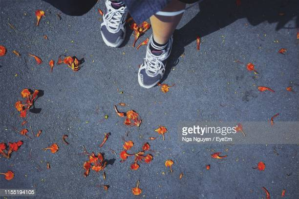 low section of person standing on street during autumn - nga nguyen stock pictures, royalty-free photos & images