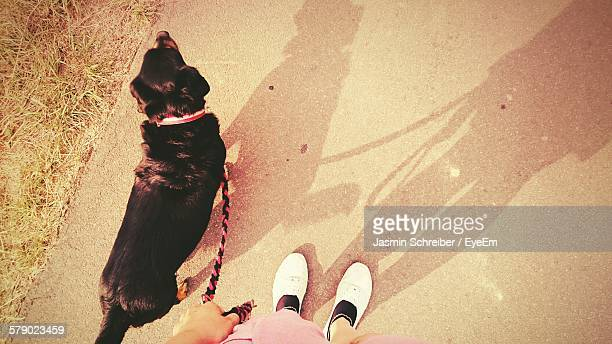 Low Section Of Person Standing With Dog On Footpath