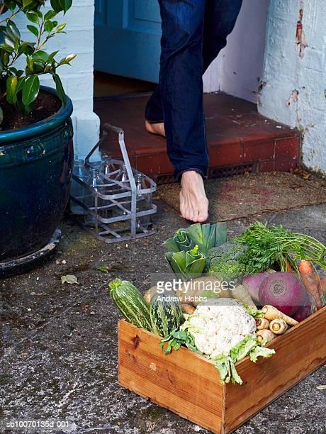 seção de baixa de pessoa caminhando em direção a gaiola de legumes outsid - parte inferior - fotografias e filmes do acervo