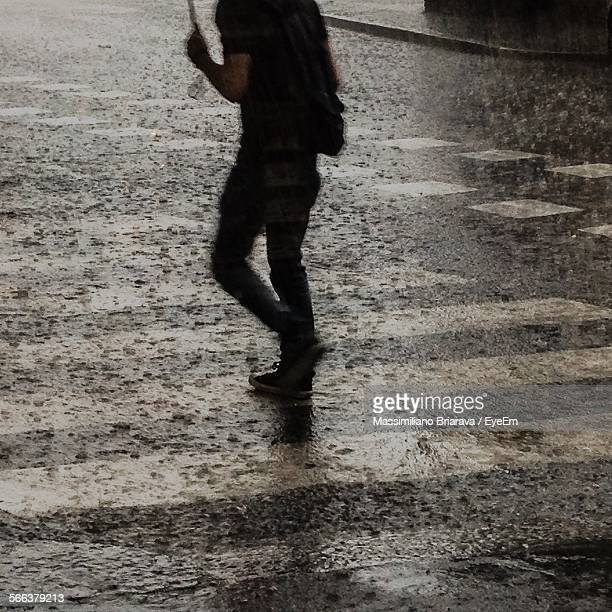 Low Section Of Person Walking With Umbrella During Rainy Season