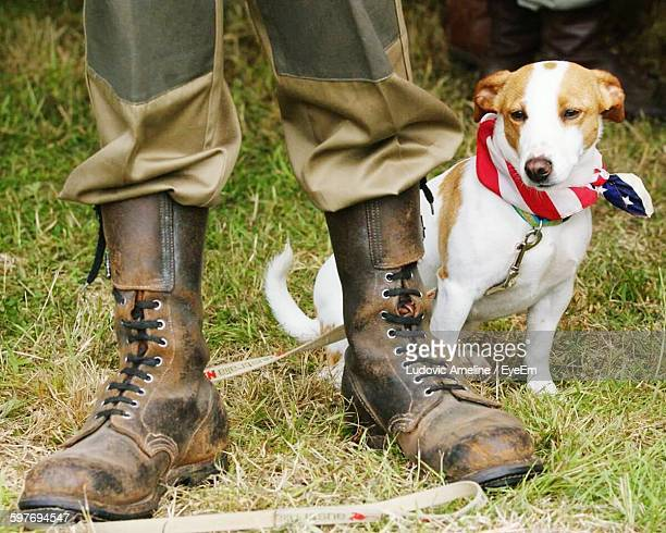 Low Section Of Person Wearing Boots With Jack Russell Terrier On Field