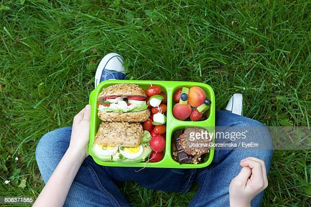 Low Section Of Person With Lunch Box Sitting On Grassy Field