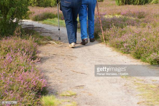 Low Section Of Senior Couple Walking On Footpath At Park