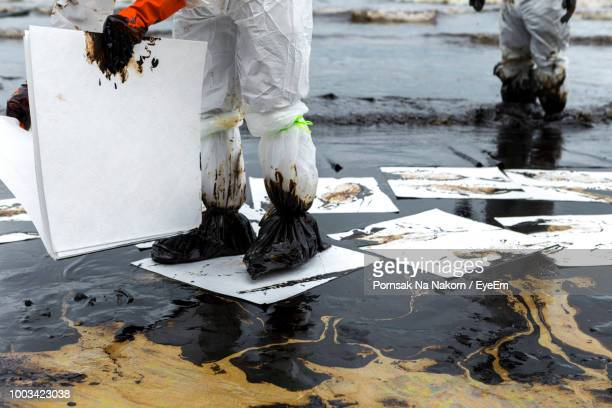 low section of volunteers holding cardboards while standing in oil at beach - oil spill stock pictures, royalty-free photos & images