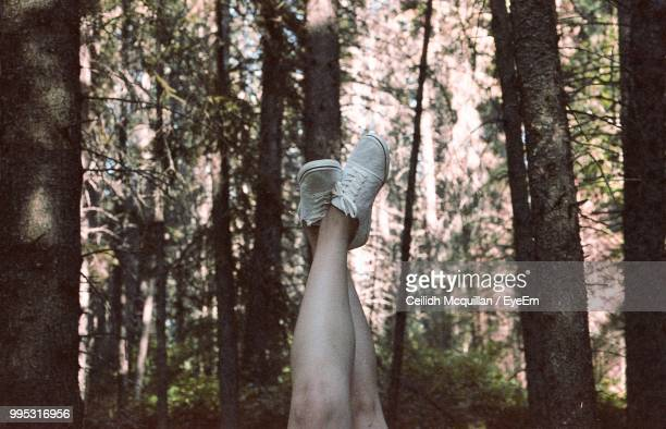 Low Section Of Woman Against Trees In Forest