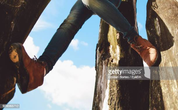 Low Section Of Woman Amidst Trees Against Sky
