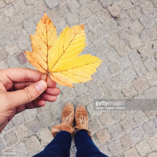 Low Section Of Woman Holding Maple Leaf While Standing On Footpath