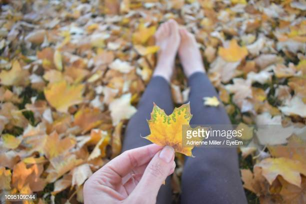 Low Section Of Woman Holding Yellow Leaf