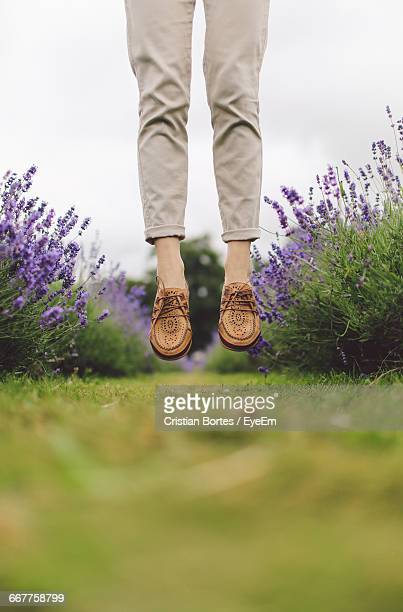 Low Section Of Woman Jumping In Field Of Lavender