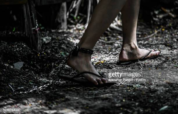 low section of woman legs trapped with chain in forest - esclavage photos et images de collection
