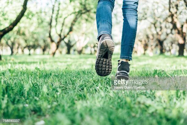 Low Section Of Woman On Grass