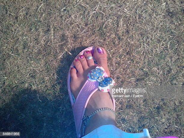 low section of woman on grassy field - indian female feet stock pictures, royalty-free photos & images