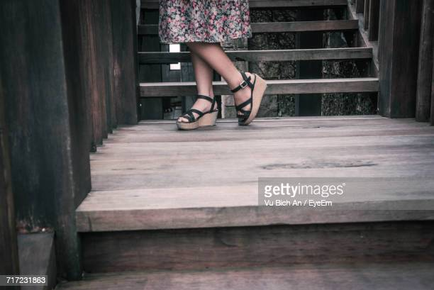 Low Section Of Woman On Steps