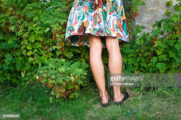 low section of woman picking currants - up skirt stock photos and pictures