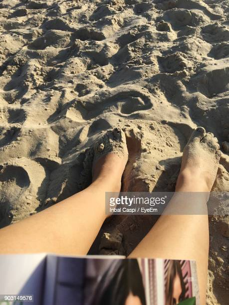 low section of woman sitting at sandy beach on sunny day - low section stock pictures, royalty-free photos & images