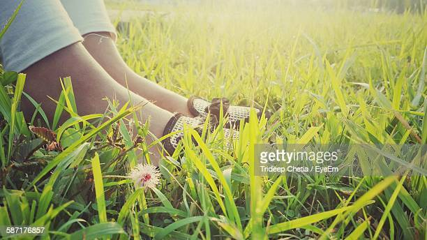 Low Section Of Woman Sitting On Grassy Field