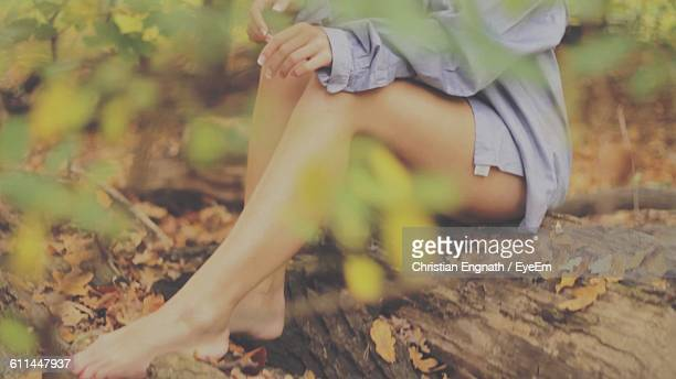Low Section Of Woman Sitting On Log